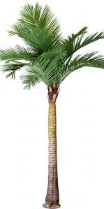 Palm - Grön - 370 cm - www.frokenfraken.se