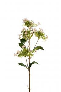Mr Plant Hortensia - Rosa - 80 cm - www.frokenfraken.se