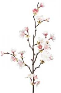Mr Plant Körsbärskvist - Rosa - 60 cm