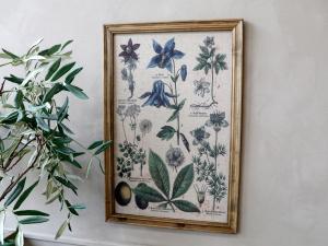 Tavla med ram - Växter - 60 x 40 cm - www.frokenfraken.se