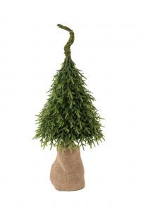 Mr Plant Gran - Grön - 85 cm
