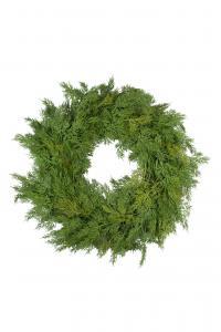 Mr Plant Cypresskrans - 70 cm