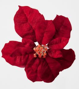 Mr Plant Julstjärna blomma - Röd -