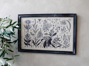 Tavla - Växtmotiv - Med svart ram - 40 x 60 cm - www.frokenfraken.se