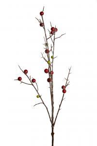 Mr Plant Bärkvist - - 90 cm