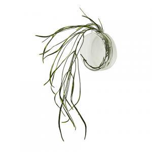 Vas för vägg - Cirkel - Ø12 cm - www.frokenfraken.se