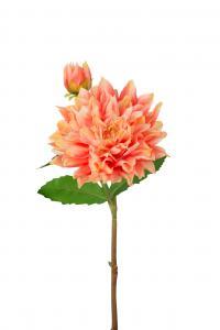 Dahlia - Orange - 70 cm - www.frokenfraken.se