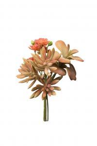 Succulent bukett - Orange - 18 cm - www.frokenfraken.se
