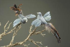 Fågel - Heaven - 24 x 13 cm - www.frokenfraken.se