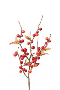 Mr Plant Bärkvist - Orange - 35 cm