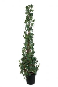 Murgröna - Konstväxt - 180 cm - www.frokenfraken.se