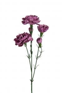 Mr Plant Elegance nejlika - Lila - 65 cm