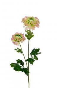 Ranuncel - Rosa - 80 cm - www.frokenfraken.se