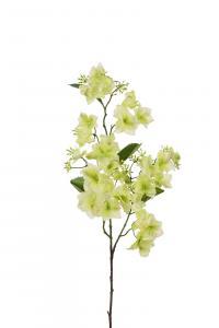 Mr Plant Hortensia - Grön - 90 cm - www.frokenfraken.se