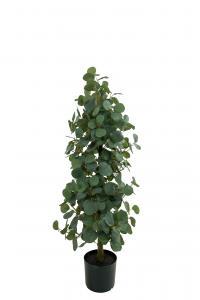 Eucalyptus - Grön - 100 cm - www.frokenfraken.se