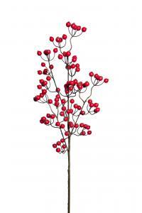 Mr Plant Bärkvist - Röd - 90 cm