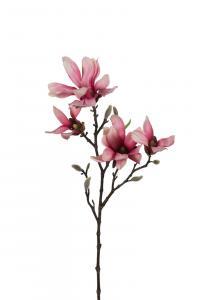 Magnolia - Rosa - 50 cm - www.frokenfraken.se