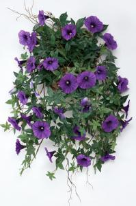 Blomma för dagen - Blå - - www.frokenfraken.se