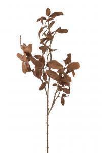 Kvist med blad - - 120 cm - www.frokenfraken.se