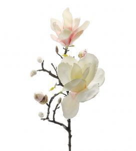 Mr Plant Magnolia - Vit/Rosa - 60 cm