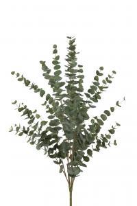Mr Plant Eucalyptus - Grön - 120 cm