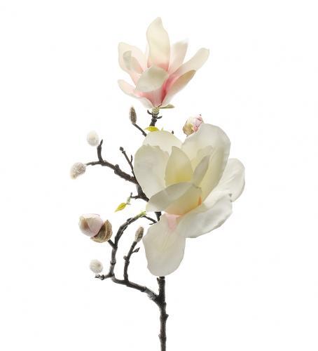 Mr Plant Magnolia - Vit/Rosa - 60 cm - www.frokenfraken.se