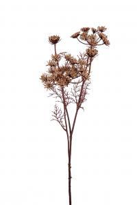 Trachelium - Brun - 75 cm - www.frokenfraken.se