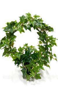 Murgröna på båge - Konstväxt - 35 cm - www.frokenfraken.se