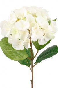 Mr Plant Hortensia - Vit sidenblomma - Ø18 cm