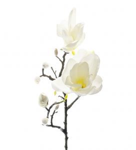 Magnolia - Vit - 60 cm - www.frokenfraken.se