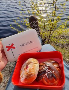 Matlåda - Fjällfika - Röd/Vit - 18 x 12 cm x 6.5 cm - www.frokenfraken.se
