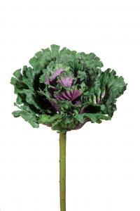 Mr Plant Prydnadskål - Grön - 60 cm
