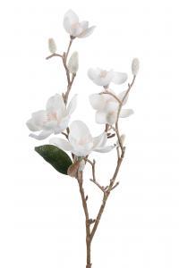 Mr Plant Magnolia med is - Vit - 65 cm