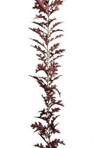 Girlang - Röd - 185 cm - www.frokenfraken.se