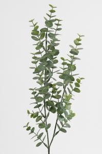 Mr Plant Eucalyptus - Grön - 74 cm