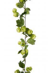 Humlegirlang - Grön - 150 cm - www.frokenfraken.se