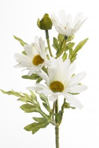 Mr Plant Marguritt - Vit - 32 cm - www.frokenfraken.se