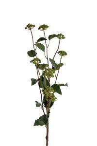 Mr Plant Bärkvist - Grön - 100 cm