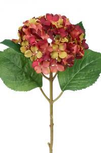 Mr Plant Hortensia - Bordeaux-Röd sidenblomma - Ø12 cm