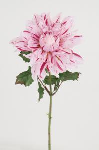 Dahlia - Rosa - 45 cm - www.frokenfraken.se