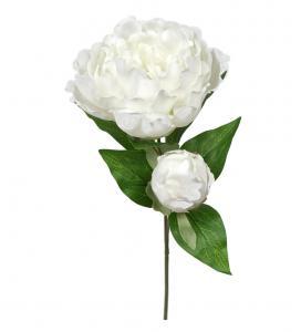 Mr Plant Pion - Vit - 35 cm