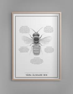 Poster - Våra älskade bin - 30 x 40 cm - www.frokenfraken.se