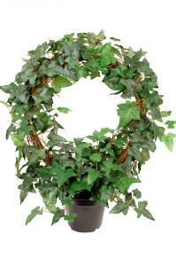 Mr Plant Murgröna på båge - Konstväxt - 45 cm