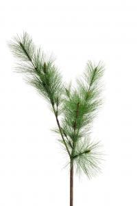 Mr Plant Tall - Grön - 160 cm