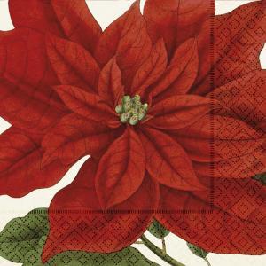 Servett - Julstjärna - 33 x 33 cm - www.frokenfraken.se