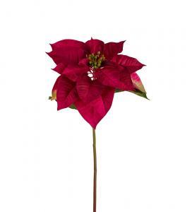 Julstjärna - Röd - 70 cm - www.frokenfraken.se
