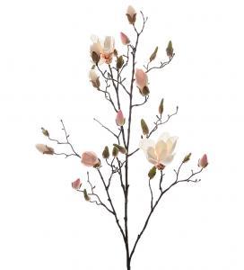 Mr Plant Magnolia - Vit/Rosa - 110 cm