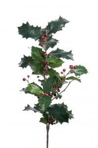 Mr Plant Järnek - Röd - 85 cm