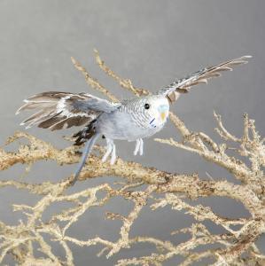 Alot Fågel - Grå Undulat Flygande - 20 cm