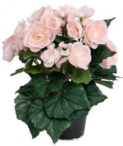 Mr Plant Begonia Ljusrosa - Konstväxt - 28 cm